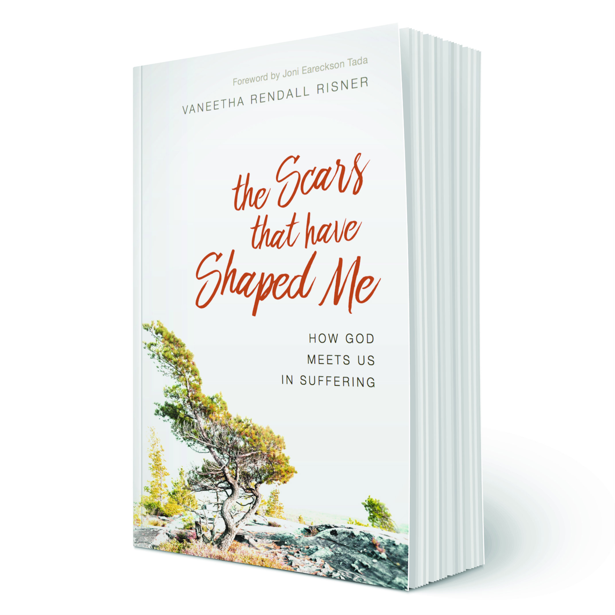The Scares That Have Shaped Me Book Cover