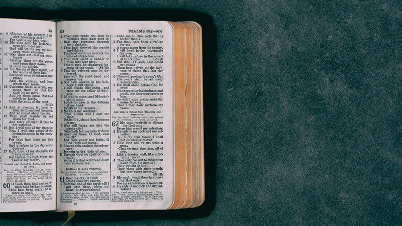 Do You Enjoy Reading the Bible?