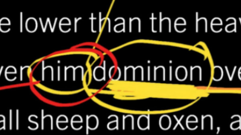 Psalm 8: Does Man Still Have Dominion?