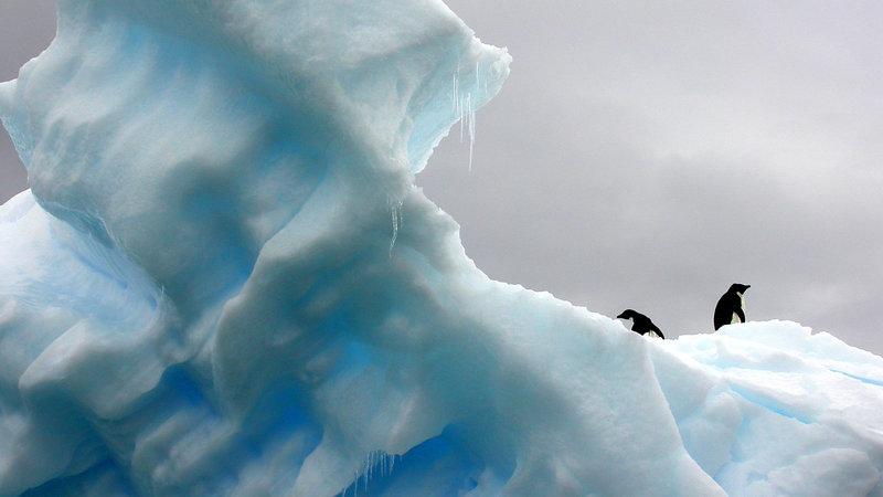 Ten Passages for Pastors to Memorize Cold